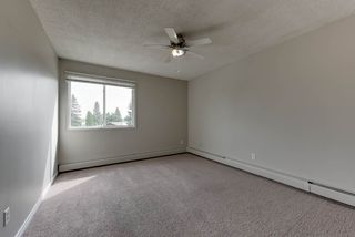 Photo 28: 8 3225 71 Street in Edmonton: Zone 29 Condo for sale : MLS®# E4195992