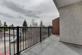Photo 33: 8 3225 71 Street in Edmonton: Zone 29 Condo for sale : MLS®# E4195992