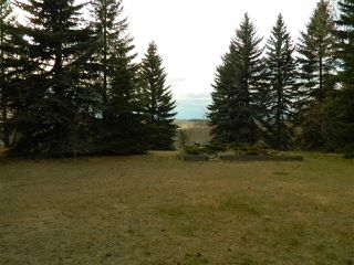 Photo 24: 8 View Drive: Rural Sturgeon County House for sale : MLS®# E4197171