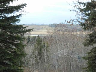 Photo 23: 8 View Drive: Rural Sturgeon County House for sale : MLS®# E4197171