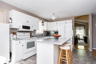 Photo 6: 99 Maplegrove Road in Winnipeg: Riverbend Residential for sale (4E)  : MLS®# 202018235