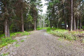 Photo 22: 2677 ROSE Drive in Williams Lake: Williams Lake - Rural East House for sale (Williams Lake (Zone 27))  : MLS®# R2487890