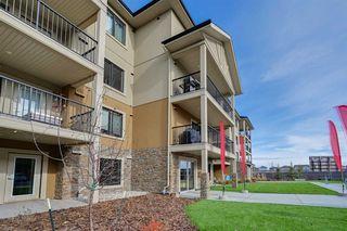 Main Photo: 105 1031 173 Street SW in Edmonton: Zone 56 Condo for sale : MLS®# E4220797