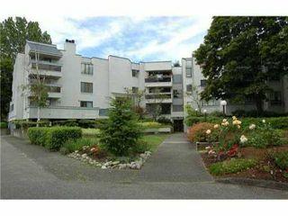"Photo 1: 301 8760 BLUNDELL Road in Richmond: Garden City Condo for sale in ""BLUNDELL GARDENS"" : MLS®# V842516"