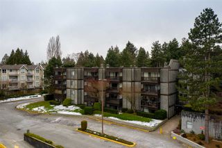 "Photo 17: 111 13501 96 Avenue in Surrey: Queen Mary Park Surrey Condo for sale in ""Parkwoods"" : MLS®# R2387791"