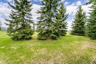 Photo 45: 34 SANDPIPER Drive: Sherwood Park House for sale : MLS®# E4197105