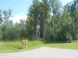 Photo 2: 235 49119 RR73: Rural Brazeau County Rural Land/Vacant Lot for sale : MLS®# E4208391