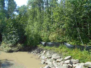 Photo 7: 235 49119 RR73: Rural Brazeau County Rural Land/Vacant Lot for sale : MLS®# E4208391