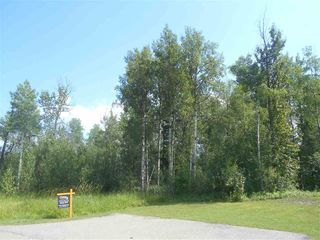 Photo 3: 235 49119 RR73: Rural Brazeau County Rural Land/Vacant Lot for sale : MLS®# E4208391