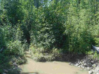 Photo 6: 235 49119 RR73: Rural Brazeau County Rural Land/Vacant Lot for sale : MLS®# E4208391
