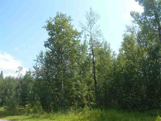 Photo 5: 235 49119 RR73: Rural Brazeau County Rural Land/Vacant Lot for sale : MLS®# E4208391
