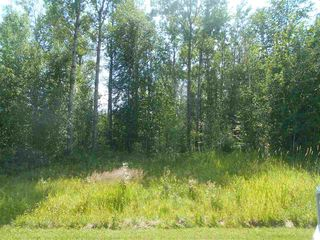 Photo 4: 235 49119 RR73: Rural Brazeau County Rural Land/Vacant Lot for sale : MLS®# E4208391