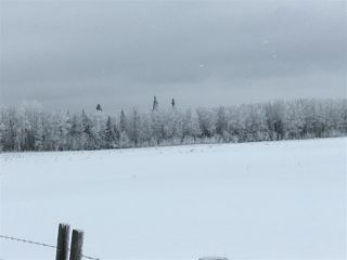 Photo 33: RR74 Twp 514: Rural Parkland County Rural Land/Vacant Lot for sale : MLS®# E4183435