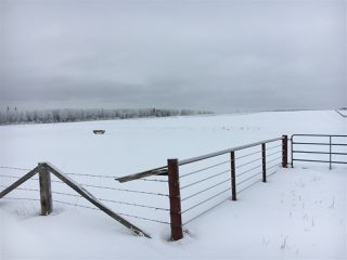 Photo 29: RR74 Twp 514: Rural Parkland County Rural Land/Vacant Lot for sale : MLS®# E4183435
