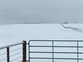 Photo 35: RR74 Twp 514: Rural Parkland County Rural Land/Vacant Lot for sale : MLS®# E4183435