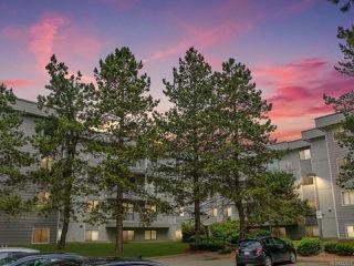 Photo 1: 214 175 Centennial Dr in COURTENAY: CV Courtenay East Condo for sale (Comox Valley)  : MLS®# 842619