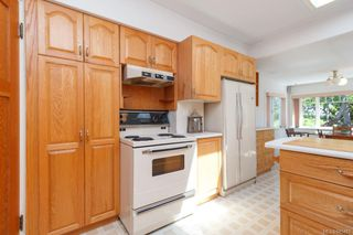 Photo 16: 315 Linden Ave in : Vi Fairfield West Single Family Detached for sale (Victoria)  : MLS®# 845481