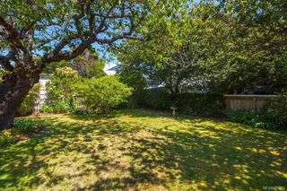 Photo 39: 315 Linden Ave in : Vi Fairfield West House for sale (Victoria)  : MLS®# 845481