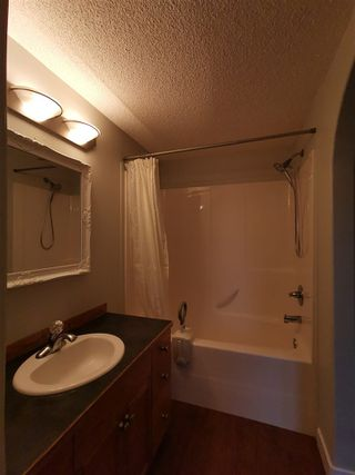 Photo 7: 9908 167 Street NW in Edmonton: Zone 22 Attached Home for sale : MLS®# E4217121