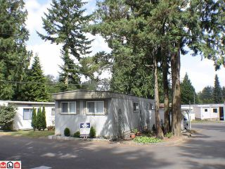 "Photo 1: 38 24330 FRASER Highway in Langley: Otter District Manufactured Home for sale in ""LANGLEY GROVE ESTATES"" : MLS®# F1020505"