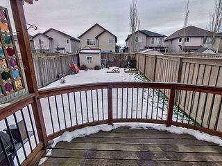 Photo 15: 8767 Stein Lane in Edmonton: Zone 14 House Half Duplex for sale : MLS®# E4181235