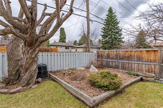 Photo 43: 377 CAPRI Avenue NW in Calgary: Brentwood Detached for sale : MLS®# C4296522