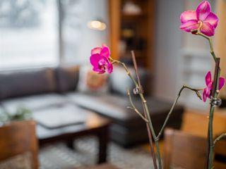 Photo 9: 5403 106 Street in Edmonton: Zone 15 House for sale : MLS®# E4221501