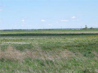 Photo 4: 0 Cooks Creek Road in OAKBANK: Anola / Dugald / Hazelridge / Oakbank / Vivian Residential for sale (Winnipeg area)  : MLS®# 1010380