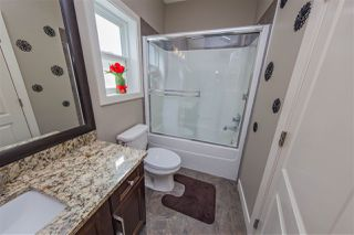 Photo 13: 3643 14 Street in Edmonton: Zone 30 House for sale : MLS®# E4169056