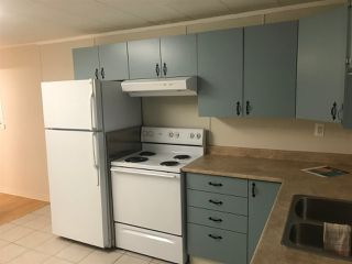 """Photo 4: 2 7790 KING GEORGE Boulevard in Surrey: East Newton Manufactured Home for sale in """"Crispen Bays"""" : MLS®# R2429425"""