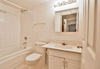 Photo 31: 345 CORAL KEYS Villas NE in Calgary: Coral Springs Detached for sale : MLS®# A1018664