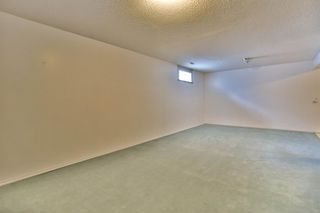 Photo 28: 345 CORAL KEYS Villas NE in Calgary: Coral Springs Detached for sale : MLS®# A1018664
