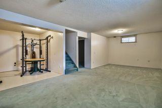 Photo 33: 345 CORAL KEYS Villas NE in Calgary: Coral Springs Detached for sale : MLS®# A1018664
