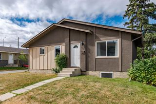 Photo 46: 1710 OLYMPIA Drive SE in Calgary: Ogden Detached for sale : MLS®# A1028799