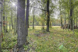 Photo 42: 27339 Twp Rd 482: Rural Leduc County House for sale : MLS®# E4214914