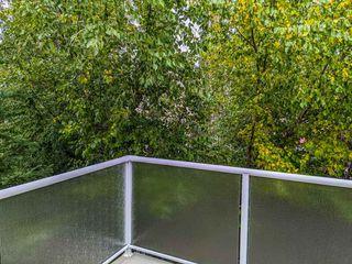Photo 39: 507 LOUGHEED Court in Edmonton: Zone 14 House for sale : MLS®# E4221830