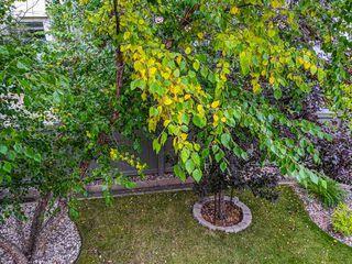 Photo 42: 507 LOUGHEED Court in Edmonton: Zone 14 House for sale : MLS®# E4221830
