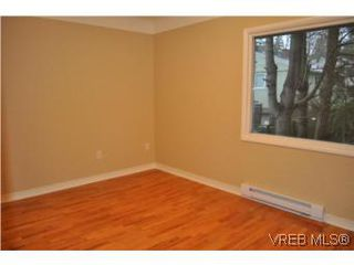 Photo 11: 3535 Maplewood Rd in VICTORIA: SE Cedar Hill Single Family Detached for sale (Saanich East)  : MLS®# 523898