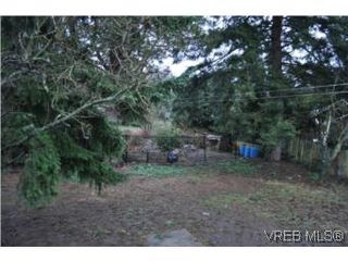 Photo 12: 3535 Maplewood Rd in VICTORIA: SE Cedar Hill Single Family Detached for sale (Saanich East)  : MLS®# 523898