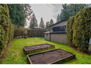 "Photo 31: 4544 205 Street in Langley: Langley City House for sale in ""MOSSEY ESTATES"" : MLS®# R2427406"