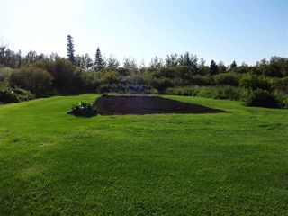 Photo 34: 56503 RR 231: Rural Sturgeon County House for sale : MLS®# E4194130