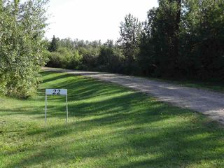 Photo 33: 56503 RR 231: Rural Sturgeon County House for sale : MLS®# E4194130