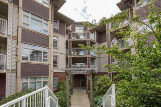 """Photo 13: 410 7339 MACPHERSON Avenue in Burnaby: Metrotown Condo for sale in """"Cadence"""" (Burnaby South)  : MLS®# R2463401"""