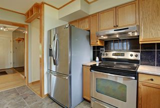 Photo 11: 22 ARMSTRONG Crescent SE in Calgary: Acadia Detached for sale : MLS®# A1015529