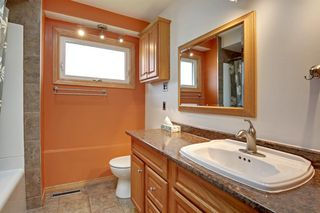 Photo 17: 22 ARMSTRONG Crescent SE in Calgary: Acadia Detached for sale : MLS®# A1015529