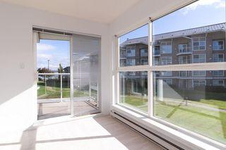 """Photo 13: 233 5880 DOVER Crescent in Richmond: Riverdale RI Condo for sale in """"WATERSIDE"""" : MLS®# R2501420"""