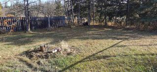 """Photo 19: 12827 MEADOW HEIGHTS Road in Fort St. John: Fort St. John - Rural W 100th Manufactured Home for sale in """"MEADOW HEIGHTS"""" (Fort St. John (Zone 60))  : MLS®# R2513549"""