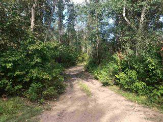 Photo 1: 119 54425 Lac Ste. Anne Trail: Rural Lac Ste. Anne County House for sale : MLS®# E4212864