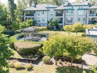 "Photo 35: 323 19528 FRASER Highway in Surrey: Cloverdale BC Condo for sale in ""Fairmont on the Boulevard"" (Cloverdale)  : MLS®# R2496518"