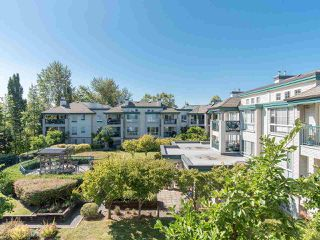 "Photo 33: 323 19528 FRASER Highway in Surrey: Cloverdale BC Condo for sale in ""Fairmont on the Boulevard"" (Cloverdale)  : MLS®# R2496518"
